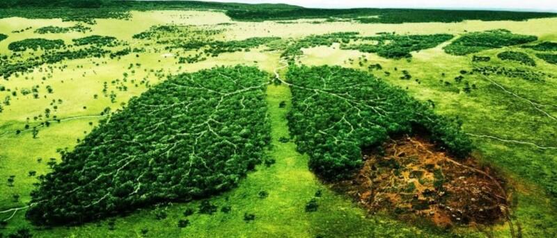 Retrofitting, o cómo reducir las emisiones en maquinaria para proteger el medio ambiente