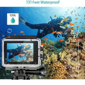 Las 7 mejores cámaras deportivas acuáticas para bucear y grabar peces