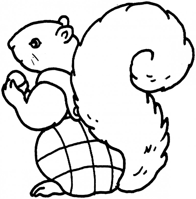 Free Iguana coloring page and tracing pages  Softschoolscom