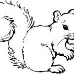 Dibujos de ardillas