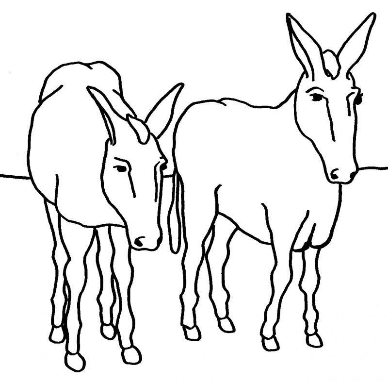 Lujoso Página Para Colorear De Balaams Burro Ilustración - Dibujos ...