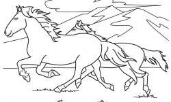 Dibujos De Animales Para Colorear E Imprimir Anipedia