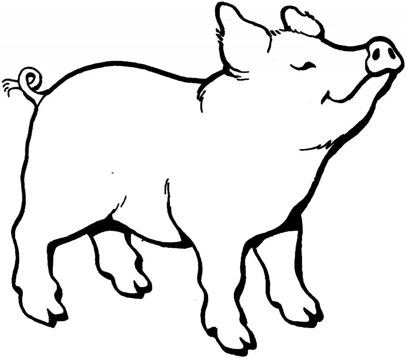 Line Art Farm Animals : Dibujos de cerdos para colorear y pintar