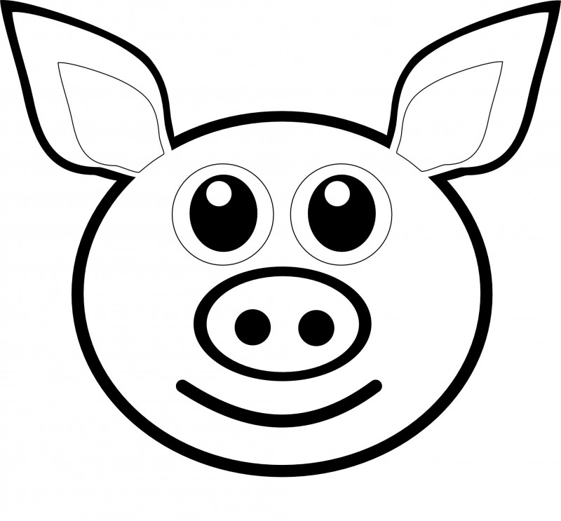 Line Drawing Of A Pig Face : Dibujos de cerdos para colorear y pintar