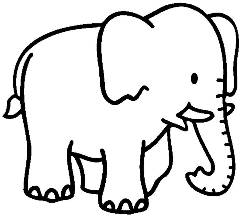 Dibujos De Elefantes Para Colorear Y Pintar