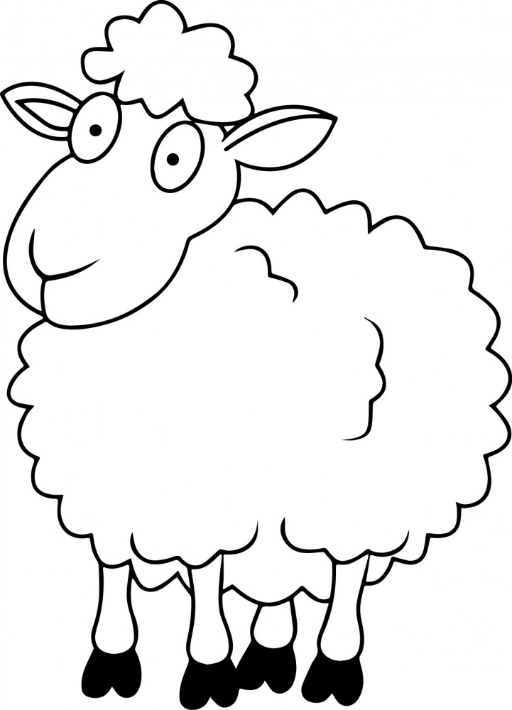 coloring page of a sheep images