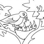 Dibujos de pájaros