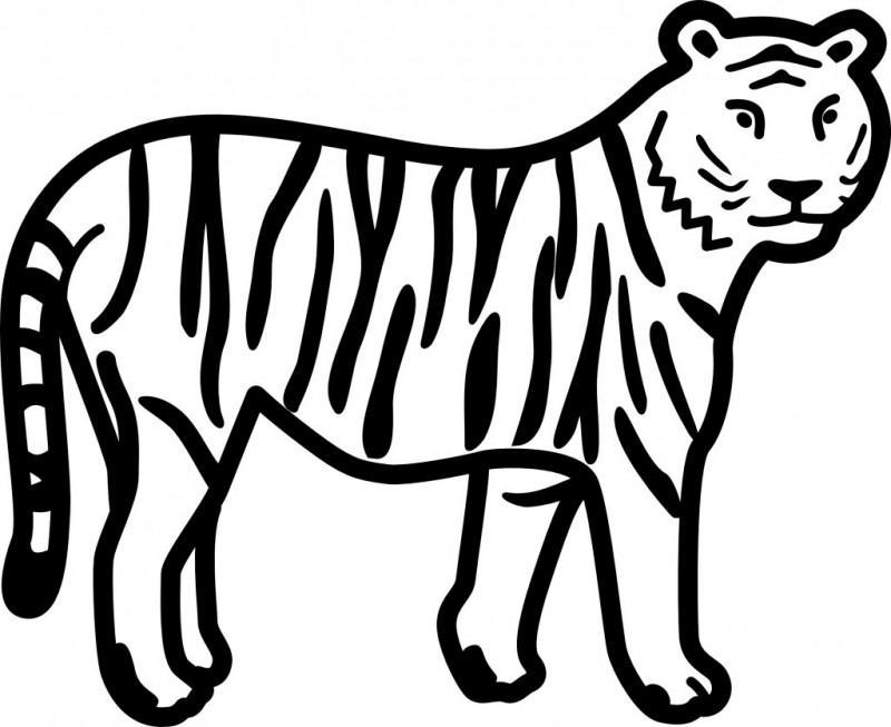 Dibujos de TIGRES (Para Colorear y Pintar)