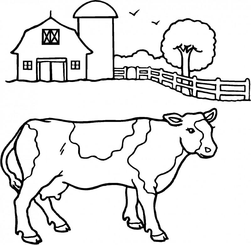Dibujos De Vacas Para Colorear Y Pintar