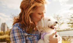Ventajas de tener perro